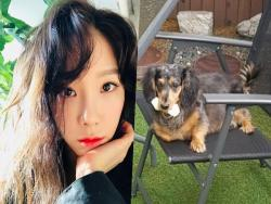 Girls' Generation's Taeyeon Asks For Help Finding SHINee's Jonghyun's Missing Dog